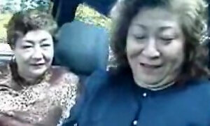 Japanese mature sluts dildoing in a car